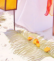greenery-palm-fronds
