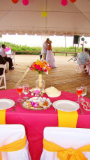 mother-of-pearl-tented-style-reception-22