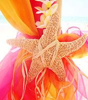 sugar-starfish-tie-backs