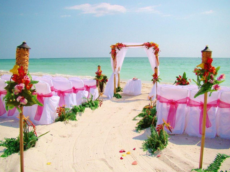 Beach Wedding Ceremony: Florida Beach Wedding With Aquarium Reception