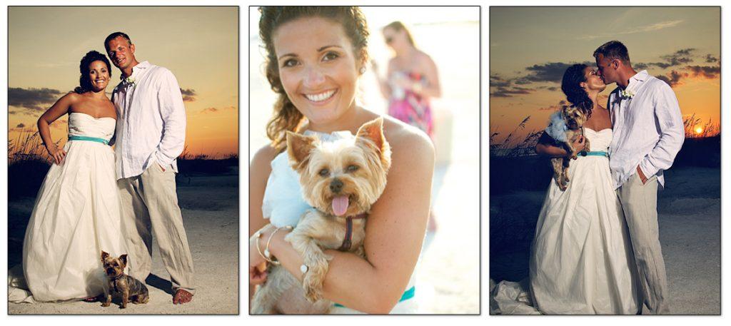 Beach Brides and their Beach Pups