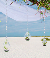 crystal teardrops canopy accents