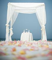 Elegant White Canopy