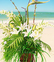 Hawaiian Paradise Alter