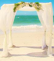 Hawaiian Paradise Canopy