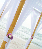 Lilac Garden wedding canopy at a destination beach wedding in Sarasota Florida