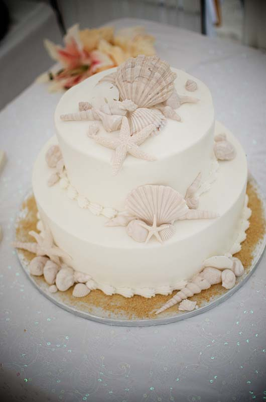 sea shell wedding cakes wedding cakes 19712