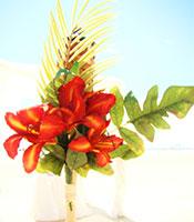 Tiki Tropical Sun