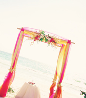 Tropical Garden wedding canopy at a destination beach wedding in Lido Key Florida