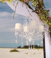 white crystal bling chandelier canopy accents